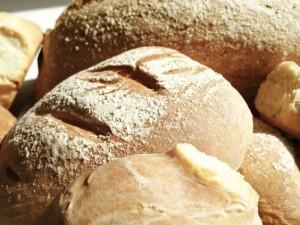 blog gezonde voeding